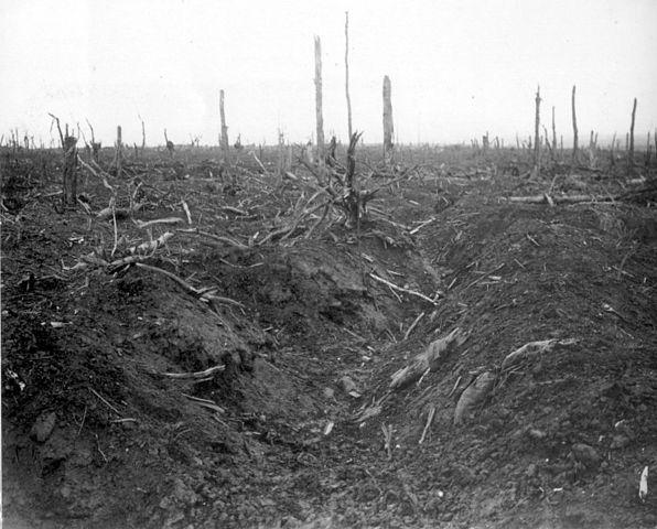 Delville 1916