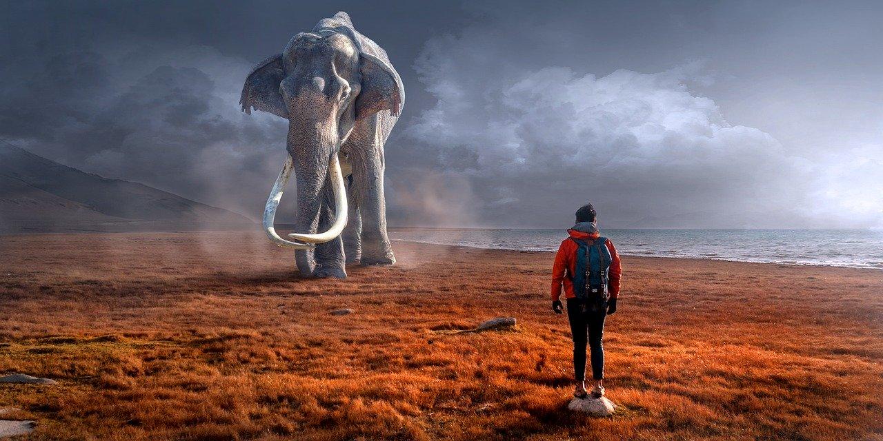 Fantasy elephant & landscape