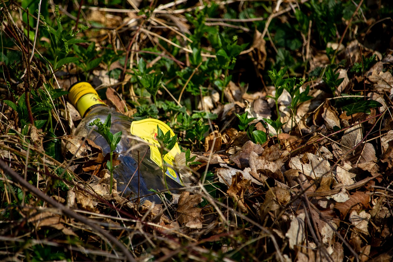 Glass bottle, abandoned in a bed of leaves